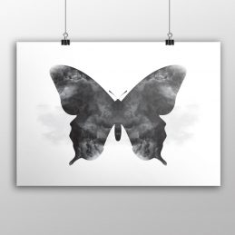 serene-butterfly-product
